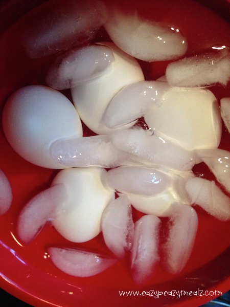 ice bath eggs