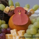 turkey fruit and cheese tray
