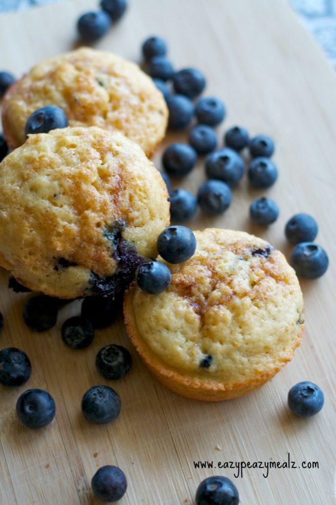 blueberry muff