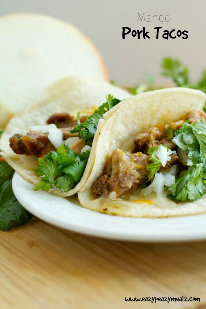 Mango Pork Tacos and Bellemain Slow Cooker Bag Review