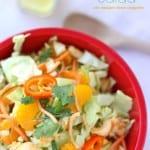 Chinese chicken salad with mandarin lemon vinaigrette dressing