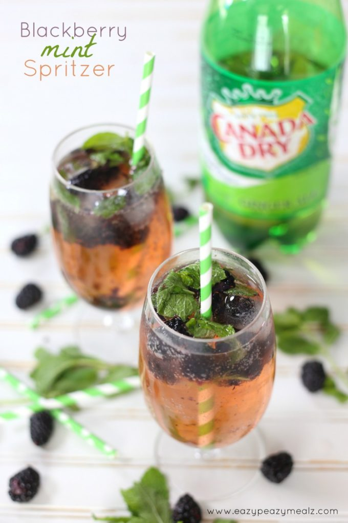 ... berry minty spritzer a berry minty spritzer 4 jpg a berry minty