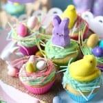 spring cupcakes hero