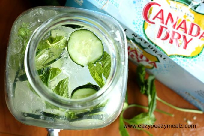 canada-dry-4