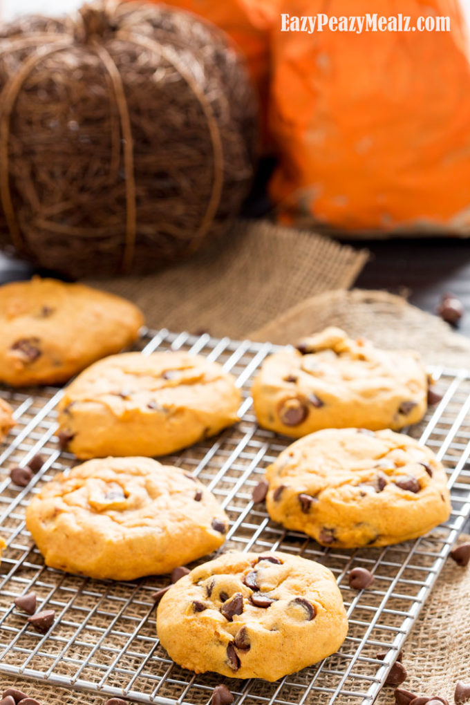 pumpkin-chocolate-chip-cookies2