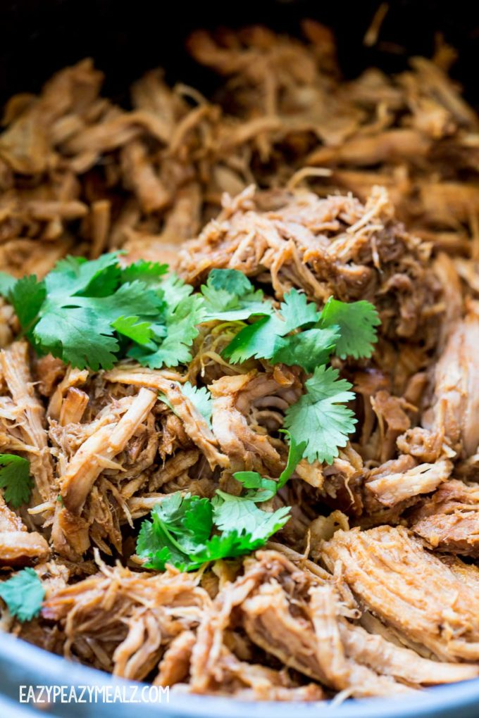 crock-pot-of-bbq-pork