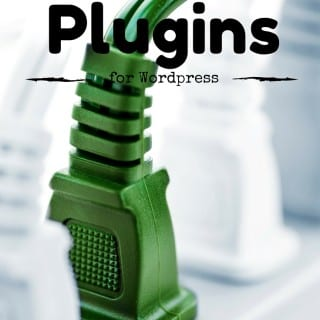Ten Plugins to Help your site function properly