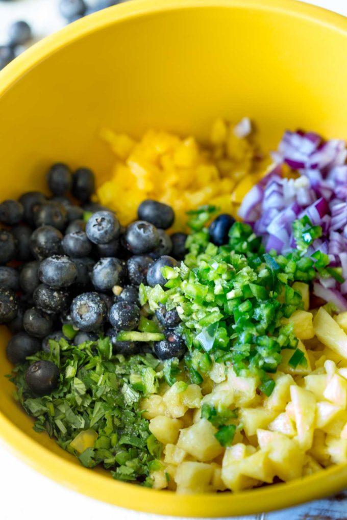 Blueberry fruit salsa ingredients