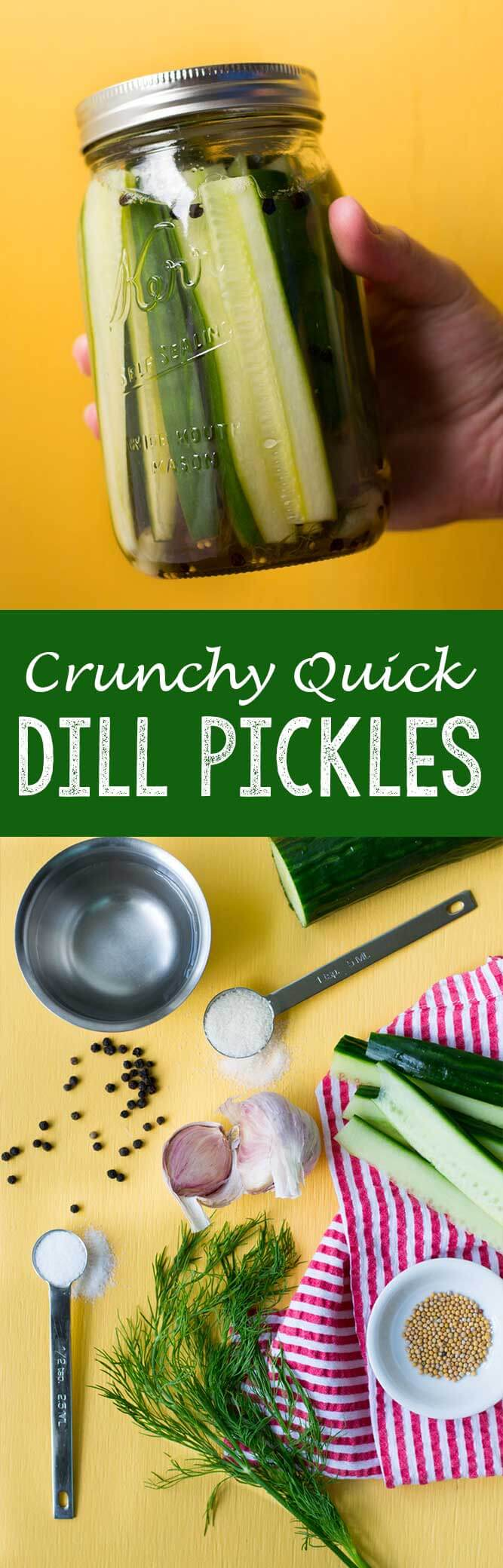 Crunchy quick dill pickles, the best refrigerator pickles you will ever eat!