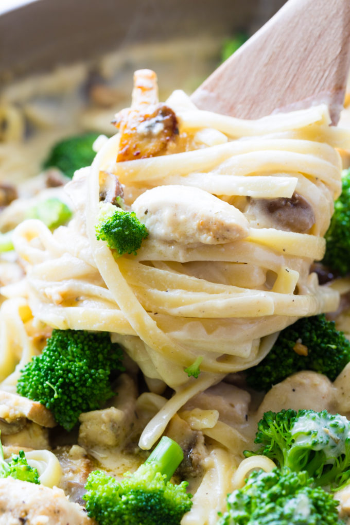 A delicious and nearly lactose free Alfredo sauce perfect for the pasta lover